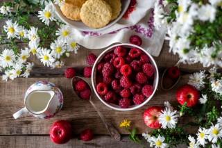 Sicurezza Alimentare e Frodi